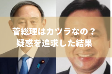 【総理大臣辞任表明】菅義偉総理は苦労したから、カツラって本当なの?