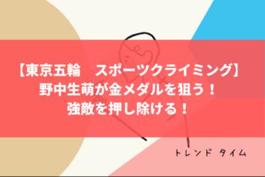 【東京五輪 スポーツクライミング】野中生萌が金メダルを狙う!強敵を押し除ける!プロフィール、家族、彼氏を紹介