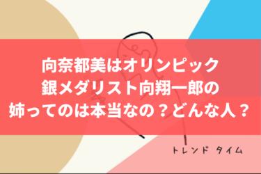 向奈都美は、あのオリンピック銀メダリストの向翔一郎って姉は本当か?どんな人なの?